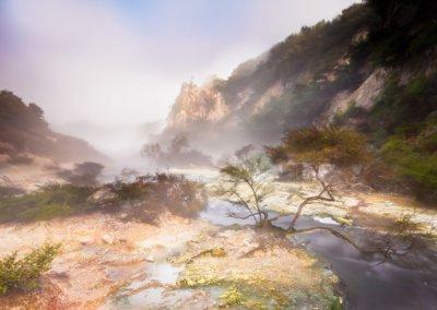Hot Stream in Waimangu Valley